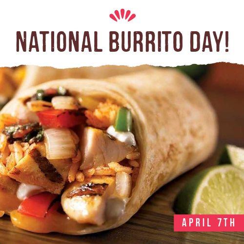 Burrito Instagram Update