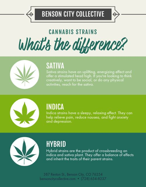 Cannabis Strains Flyer