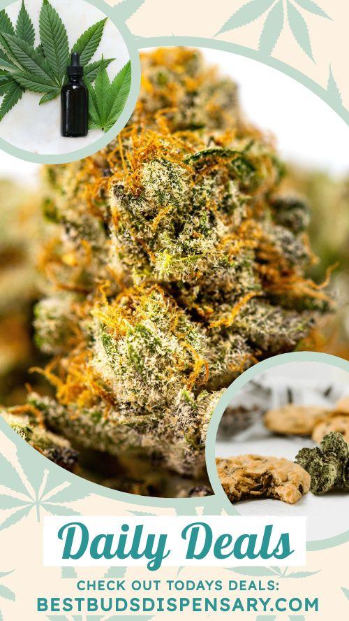 Cannabis Facebook Story